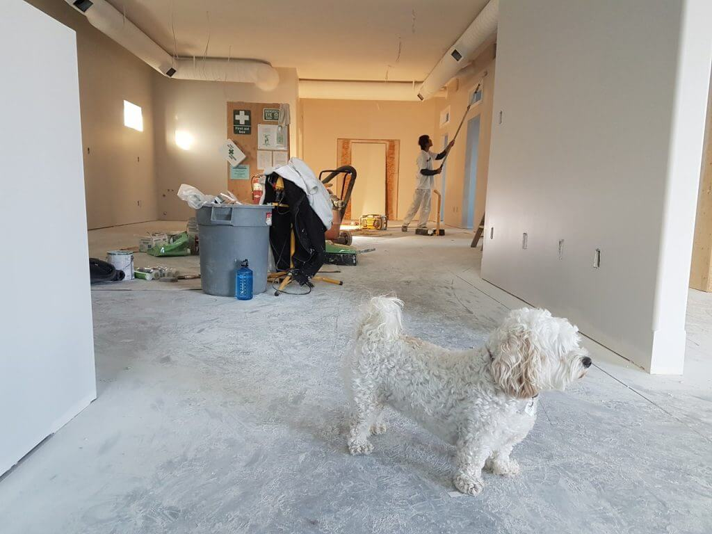 Drywall Contractors Insurance Chicago